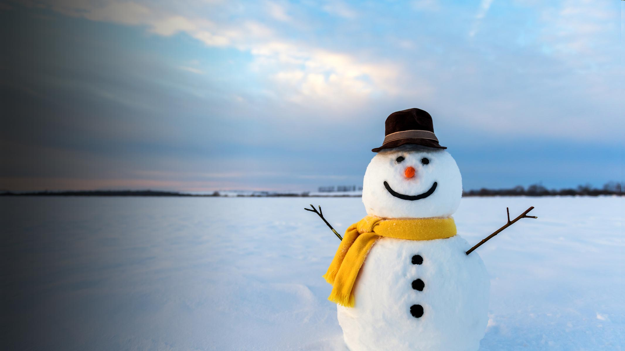 Picture of snowman with a scark and hat on